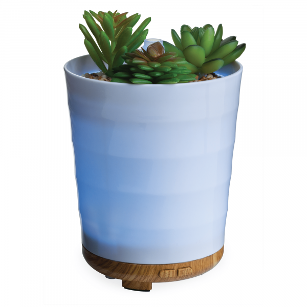 Potted Succulent Diffuser